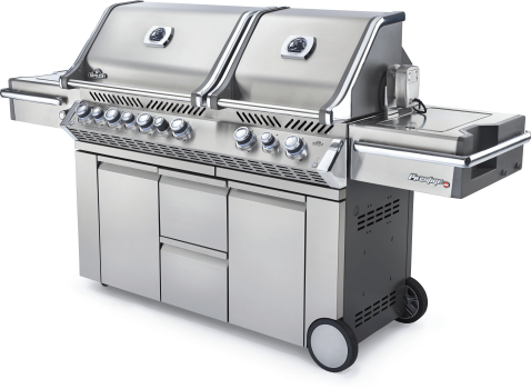 Professional Gas Grills